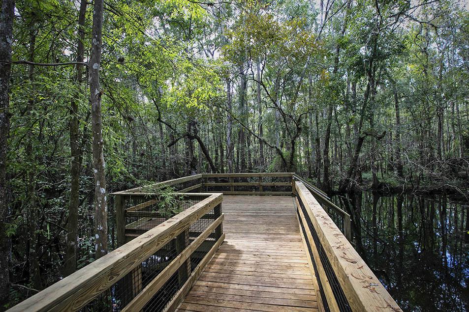 TrailMark Landing Boardwalk & Entry Steps